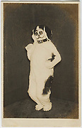Actor in dog costume, 1920s, Shochiku Studios, silver gelatin bromide post card published by Oriental Photo Paper.<br />