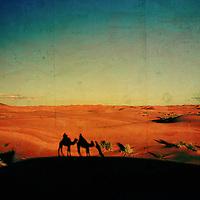 Moroccan desert sunset