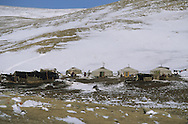 Mongolia. horse riding in winter in the snow in the height lakes area  ovokangai     /   randonnée a cheval en hiver dans la neige vers le col sur le chemin des huit lacs,   ovokangai  Mongolie  /           P119781/  landscape/  paysage