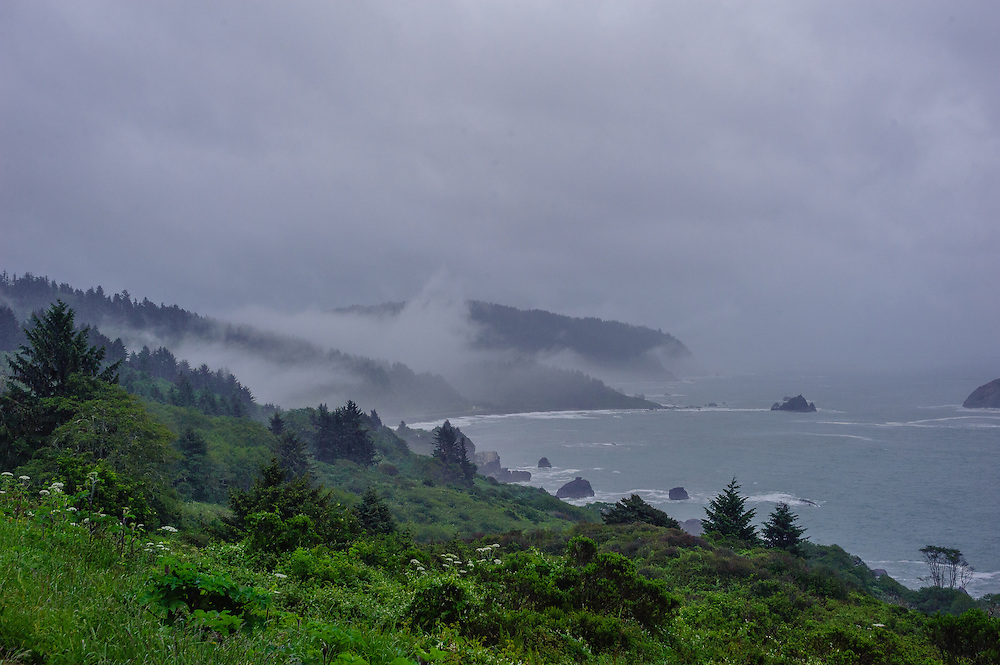 Redwoods National and State Parks, California Coast, Outside of Crescent City, CA