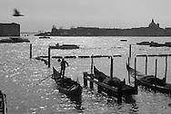 Italy. Venice.  Gondolas on the lagoon - view from the quay of Shiavoni   / rGondoles sur la Lagune , vue depuis le  Quai des Shiavoni  Venise - Italie