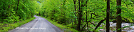 66745-04608 Tremont Road Great Smoky Mountains National Park TN
