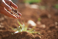 Man holding soil close-up of hand