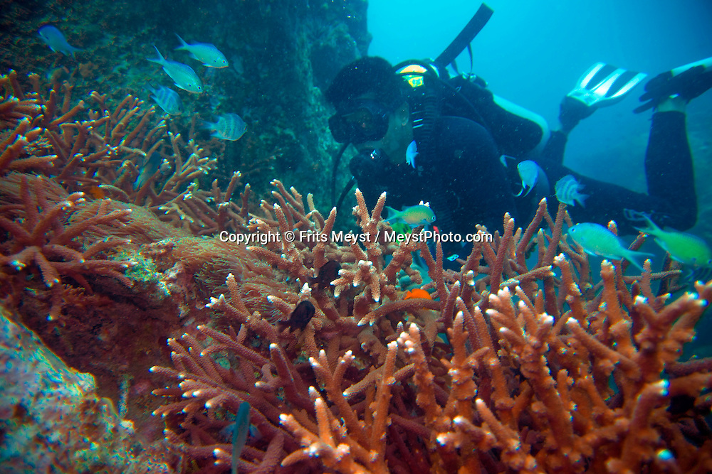 Air Batang, ABC, Pulau Tioman, Malaysia, March 2006. Tioman island is surrounded by beautiful coral reefs and offers spectacular diving and snorkling. Photo by Frits Meyst/Adventure4ever.com