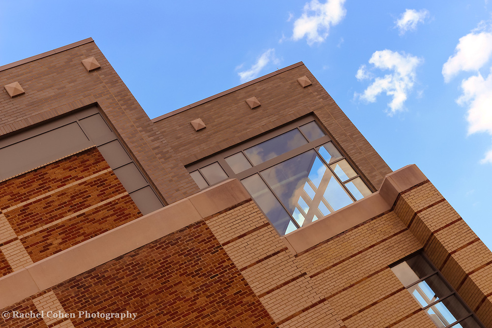 &quot;Window Treatment&quot;<br />