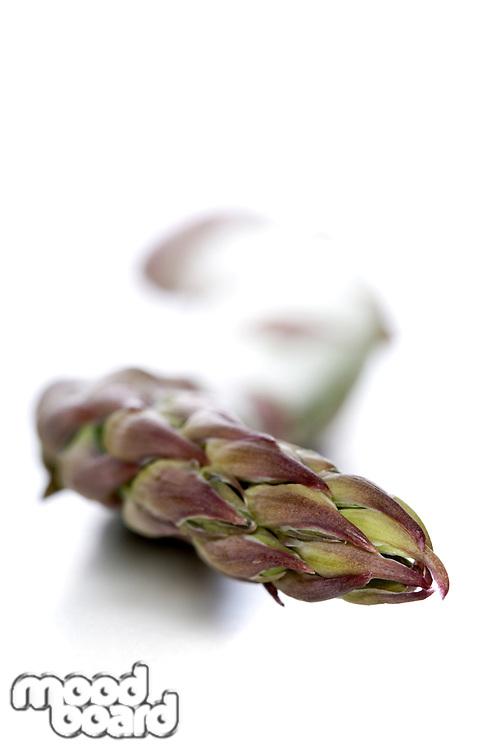 Studio shot of asparagus on white background