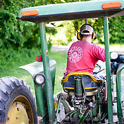 Butler's Orchard, in Germantown, MD, opens its fruit fields to visitors to pick their own strawberries, blueberries, and apples. To get the fields, visitors ride trailers pulled by farm tractors.