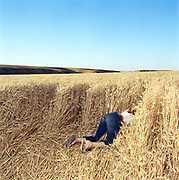 Young woman crawling into wheat field, rear view