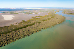Healthy mangrove systems line the water's edge near Point Torment, north of Derby.