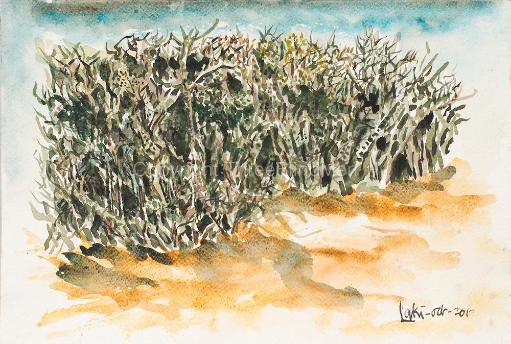 "Laki Senanayake. 'Dry Zone' Watercolour on paper. 18"" x 12"". October 2012"