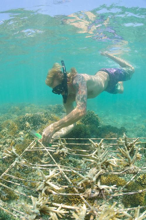 Graduate student Soli Viitasaari working on a Biorock experiment, Gili Trawangan, Lombok, Indonesia.
