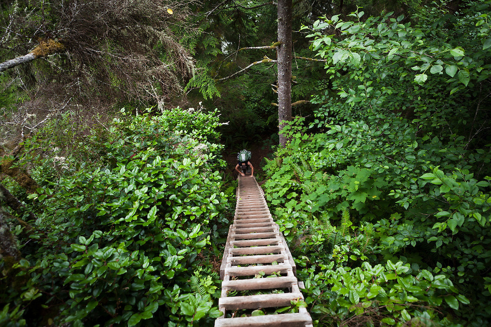 Henry downclimbs a tall ladder in forest along the West Coast Trail, British Columbia, Canada.