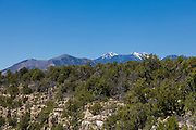 A View of the San Francisco Peaks from the rim of Walnut Canyon