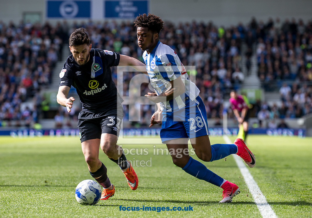 Chuba Akpom of Brighton &amp; Hove Albion and Craig Conway of Blackburn Rovers during the Sky Bet Championship match at the American Express Community Stadium, Brighton and Hove<br /> Picture by Liam McAvoy/Focus Images Ltd 07413 543156<br /> 01/04/2017