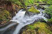 A waterfall in rain forest of Cliff Gilker Park<br /> Egmont<br /> British Columbia<br /> Canada