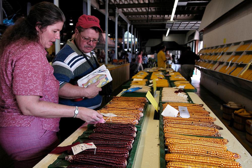 L'Iowa State Fair qui est LE salon de l'agriculture aux États-Unis. Dan et Joanne repèrent les mais primés dans la halle de l'agriculture.