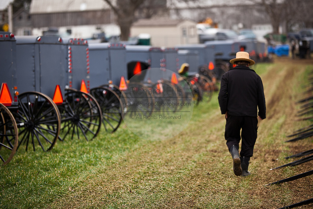 Amish man walks past dozens of buggies ready for auction during the Annual Mud Sale to support the Fire Department  in Gordonville, PA.