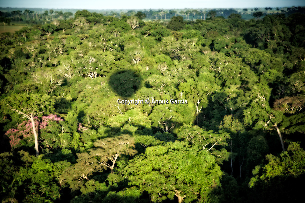 En montgolfi&egrave;re au dessus de l'Acre.<br /> Cassiano Marquez, ancien secr&eacute;taire du tourisme lance les premiers vols en montgolfi&egrave;re au dessus de l'Amazonie. | Voo de balao. Cassiano Marquez, o antigo secretario do turismo do Acre, d&eacute;sinvolve os primeiros voos de balao na amazonia.