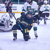 2nd year forward, Ireland South (25) of the Regina Cougars during the Women's Hockey Away Game on Fri Jan 11 at University of Saskatoon. Credit: Arthur Ward/Arthur Images