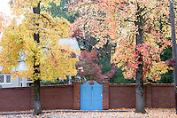 Fall Colors on a Residential Street, Nevada City, California