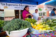 The Adelante Mujeres booth at the Forest Grove Farmers Market