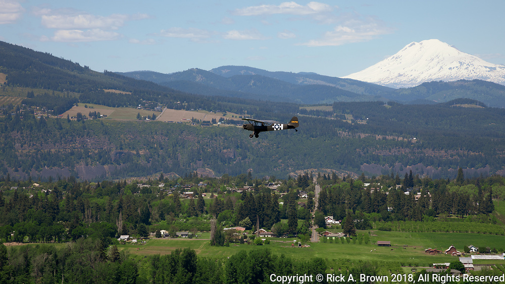 L-Birds flying around Hood River.