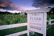 Sunset on clouds over Fetzer Vineyards, East Side Road, near Hopland, Mendocino County, California