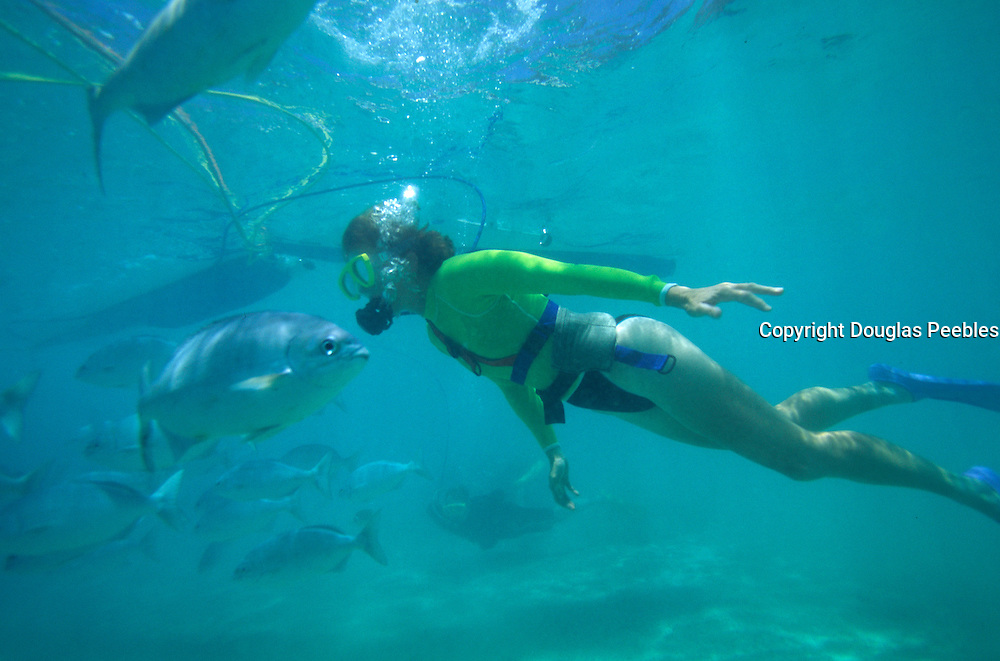 Woman snuba diving with fish, Hawaii<br />