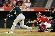 ANAHEIM, CA - APRIL 16:  Nick Punto #1 of the Oakland Athletics bats while Chris Iannetta #17 of the Los Angeles Angels of Anaheim catches Timmons #95 calls balls and strikes during the game against the Los Angeles Angels of Anaheim at Angel Stadium on Wednesday, April 16, 2014 in Anaheim, California. The Angels won the game 5-4 in 12 innings. (Photo by Paul Spinelli/MLB Photos via Getty Images) *** Local Caption *** Nick Punto;Chris Iannetta
