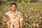 Ajit Kelkar, an organic cotton farming consulatnt on a farm in Madhya Pradesh, India.