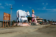 Hanuman (Monkey God) and Holy Cow with calf  along the road in Rajasthan, India.