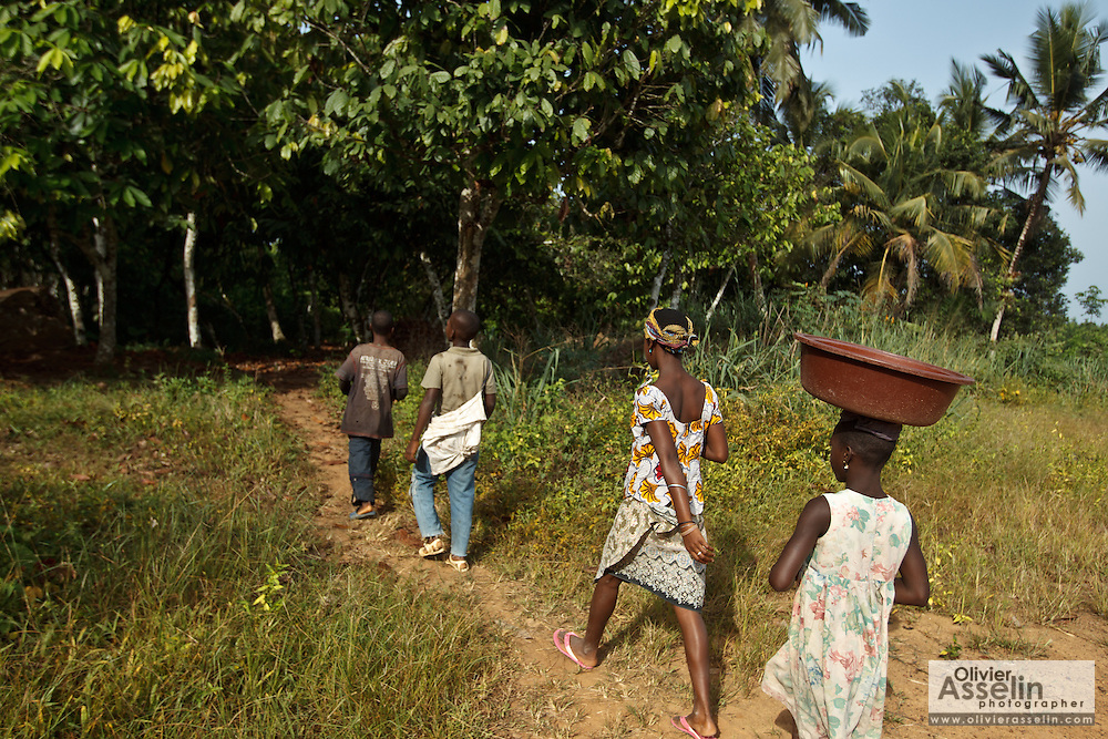 Children walk to their family's cocoa plantation to work near the village of Soumaorodougou, Bas-Sassandra region, Cote d'Ivoire on Saturday March 3, 2012. All of them go to school but help with farming chores on weekends.
