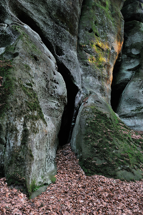 Sandstone formation, Mullerthal trail, Mullerthal, Luxembourg