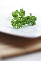 Close up of parsley on white plate