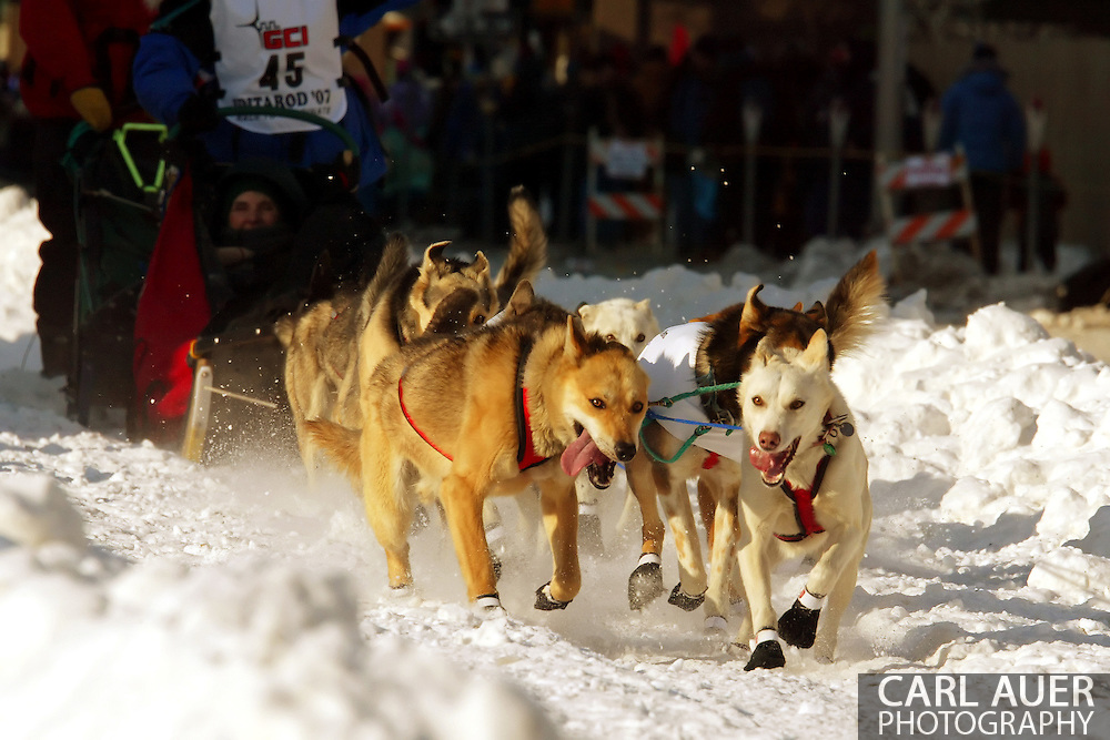 3/3/2007:  Anchorage Alaska -  The dog team of Veteran Cindy Gallea of Seeley Lake, MT during the Ceremonial Start of the 35th Iditarod Sled Dog Race