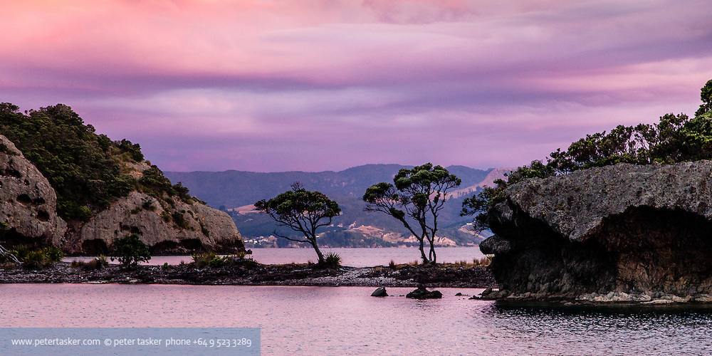 Elephant Cove, Motukahaua Island, Coromandel Peninsula. Hauraki Gulf, Auckland, New Zealand.