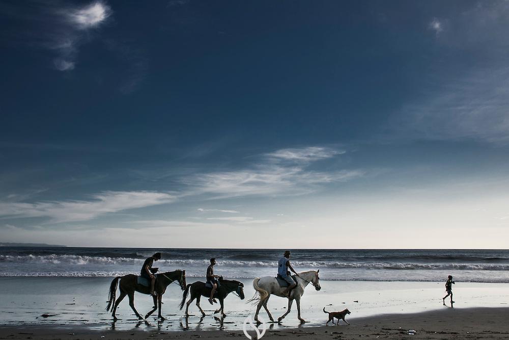 BALI, INDONESIA; APRIL 18, 2015: Horses for rental on Batu Belig Beach, Bali, Indonesia, Saturday, April 18, 2015. It cost $50 per person for 2-hour ride.