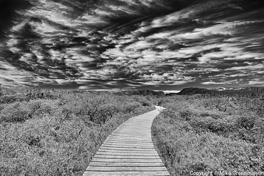 Boardwalk at Western Brook Pond<br />