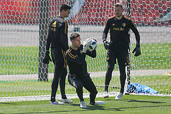 June 15, 2018 - Moscow, RUSSIA - Belgium's goalkeeper Koen Casteels pictured during a training session of Belgian national soccer team the Red Devils in Nahabino, near Moscow, Russia, Friday 15 June 2018. The team is preparing for their first game at the FIFA World Cup 2018 next Monday. BELGA PHOTO BRUNO FAHY (Credit Image: © Bruno Fahy/Belga via ZUMA Press)