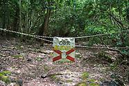 Japan suicide forest Aokigahara Jukai