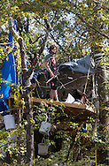October 15th, Winnsboro Texas, members of the Tree Blocakde on platforms 70ft above the ground in the path of the Keystone Pipe line construction, watch as a group of envirnemntal activists in the Tar Sands Blockade hold their largest direct action protest to date. The Tar Sands Blocakde's direct action shut down construction on one of  TransCanada's Keystone Pipeline worksites, while activist tried to resupply the tree sitters who remain on tree platforms going into their third week.