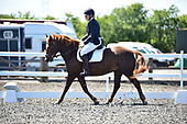 45 - 10th Jun - Dressage