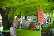 Fruit stand, Kahakuloa, Maui, Hawaii (editorial use only)<br />