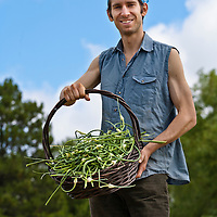 Organic farmer Daniel Hoffman holding a large basket of freshly harvested garlic scapes.