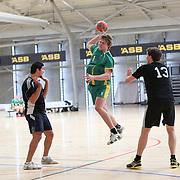 Handball Championships 2013