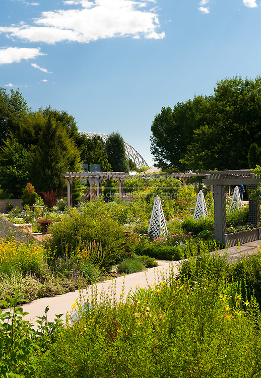 view to Rose Garden