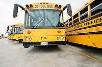 School Busses Parked in Lot