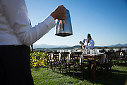 Melinda and Ron celebrate their wedding with family and friends at the Sciandri Family Vineyard in Napa, California, on September 7, 2013.  (Stan Olszewski/SOSKIphoto for Benjamin Photographics)