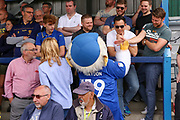 Haydon the Womble standing in crowd and giving a high five during the EFL Sky Bet League 1 match between AFC Wimbledon and Wycombe Wanderers at the Cherry Red Records Stadium, Kingston, England on 31 August 2019.