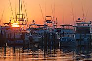 Luxury yachts in marina at The Sandestin Golf & Beach Resort; Destin; Florida